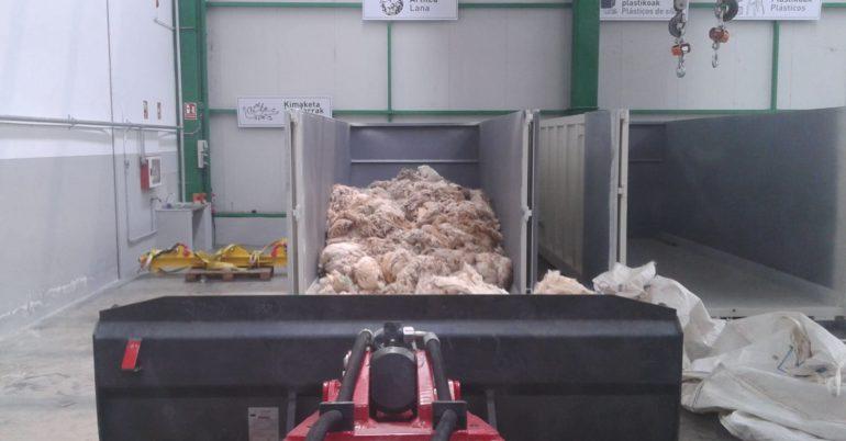 Recogida de lana de oveja gratis